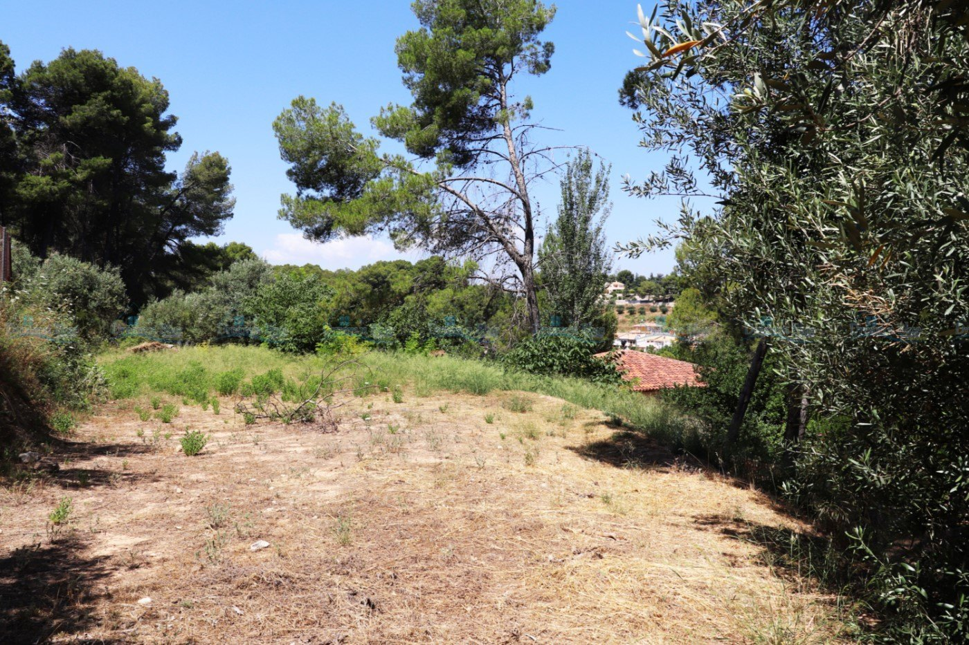 Land for sale in Ontinyent